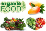 Global Organic Food Market Forecast: JSBMarketResearch