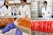 European Enzyme Immunoassay Market by Type,  Technique,  End User: JSBMa