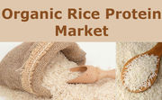 Organic Rice Protein Market reaches USD 96.5 million by 2021